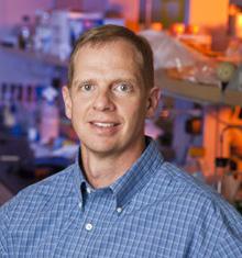 David Gamm, MD, PhD, Humble Distiguished Director, McPherson ERI